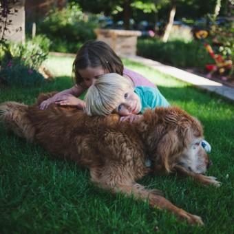 Denver Family Photographer, Harrington Family